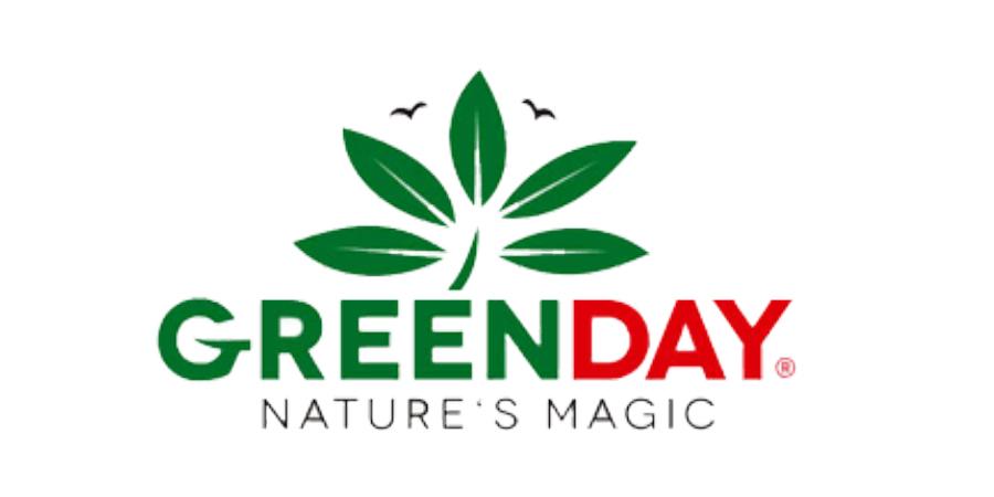 amix greenday